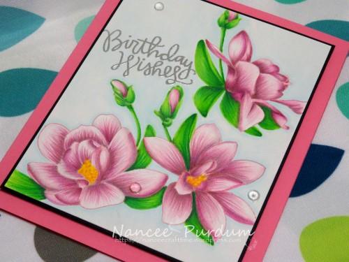 Birthday Cards-456