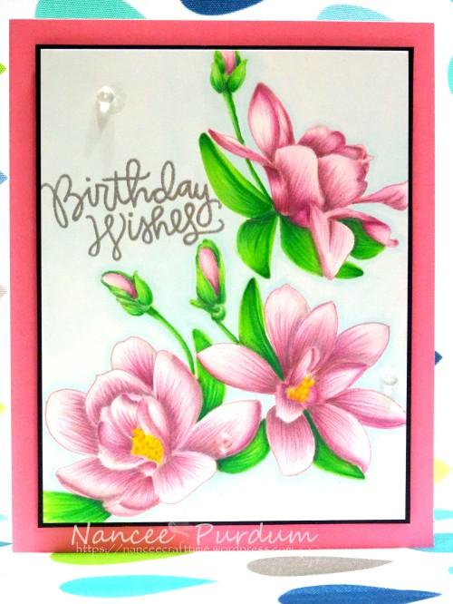 Birthday Cards-461